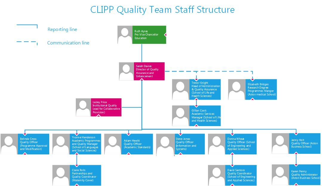 Quality Team Structure