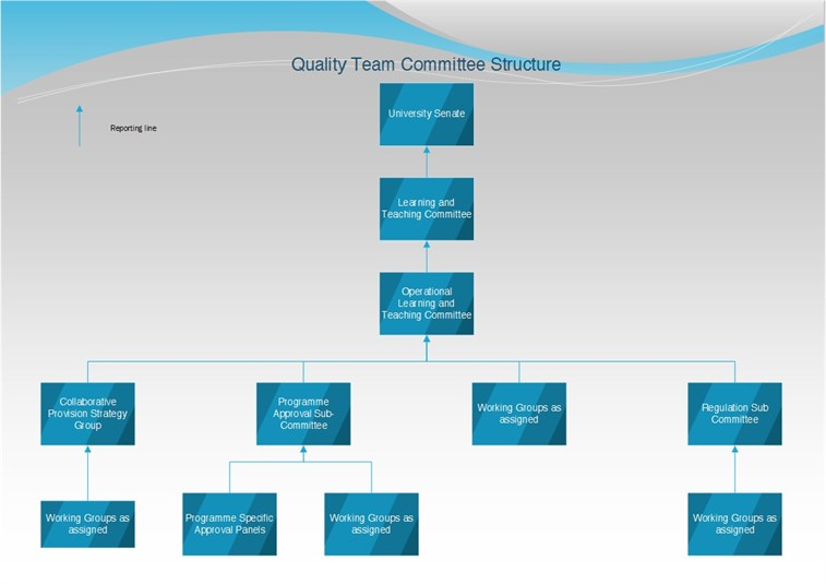 Quality Committee Structure Diagram