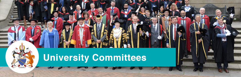 Aston University University Committees