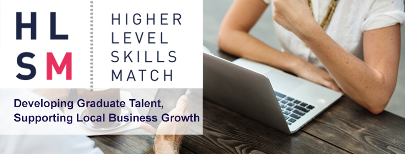 Higher Level Skill Match (HLSM) - Business