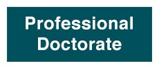 Professional Doctorate