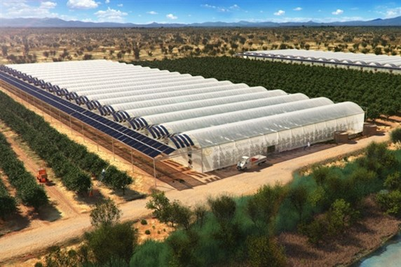 Fantastic Seawater Greenhouses To Bring Life To The Desert Home Interior And Landscaping Oversignezvosmurscom