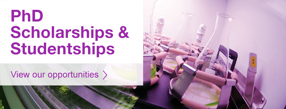 PHD scholarships and studentships