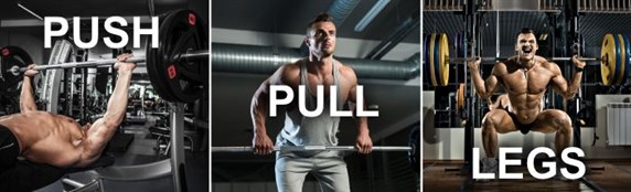 The Push/Pull/Legs Routine for Muscle Gains
