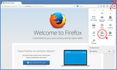 How to set up Mozilla Firefox to use proxy server